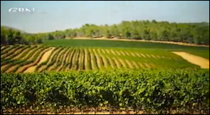 CBN Israel Video Series - Agriculture